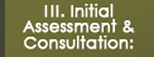 IV. Initial Assessment & Consultation: